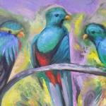quetzales-michilini.jpg