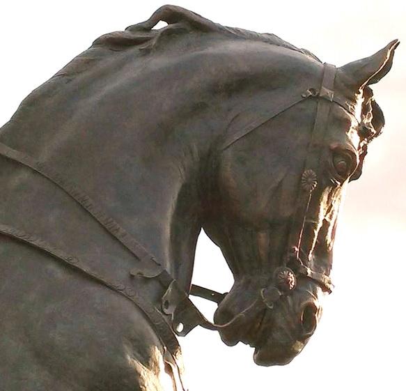 Salvatore Lovaglio, RE MANFREDI, 2015, statua equestre in bronzo, Manfredonia, DETTAGLIO